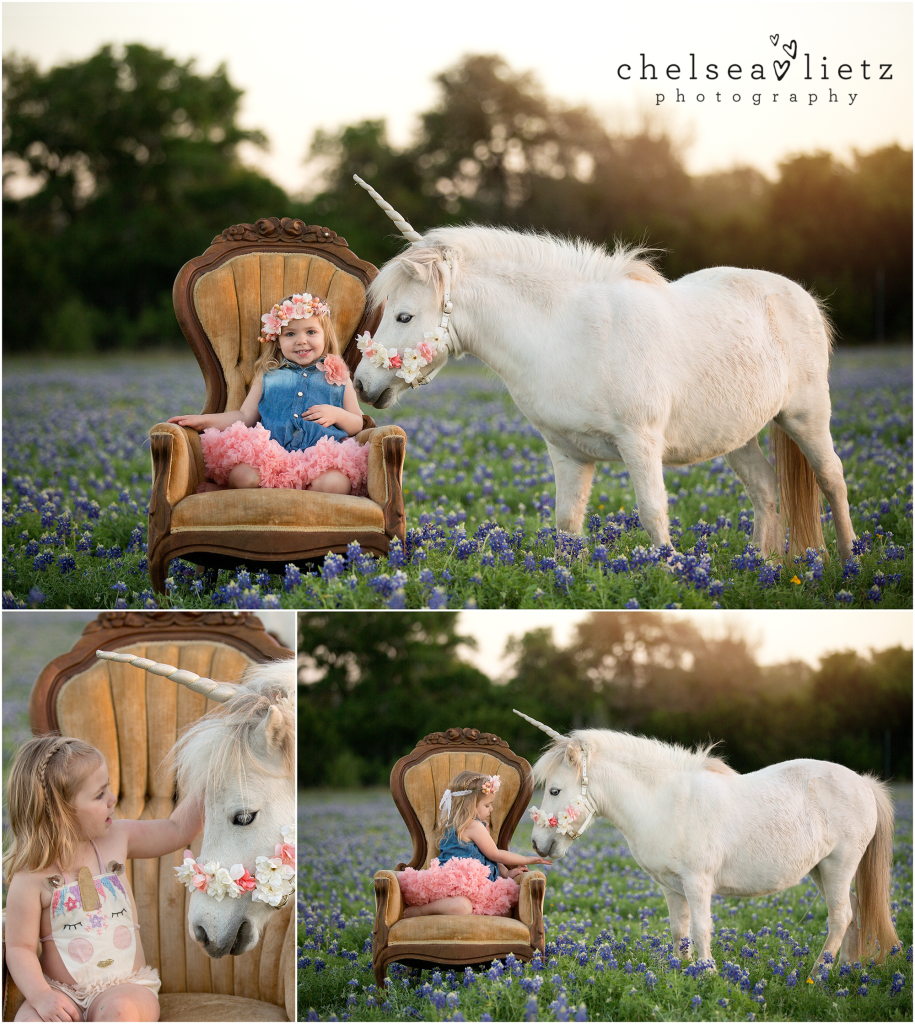 Unicorn And Pony Photos For Children Chelsea Lietz
