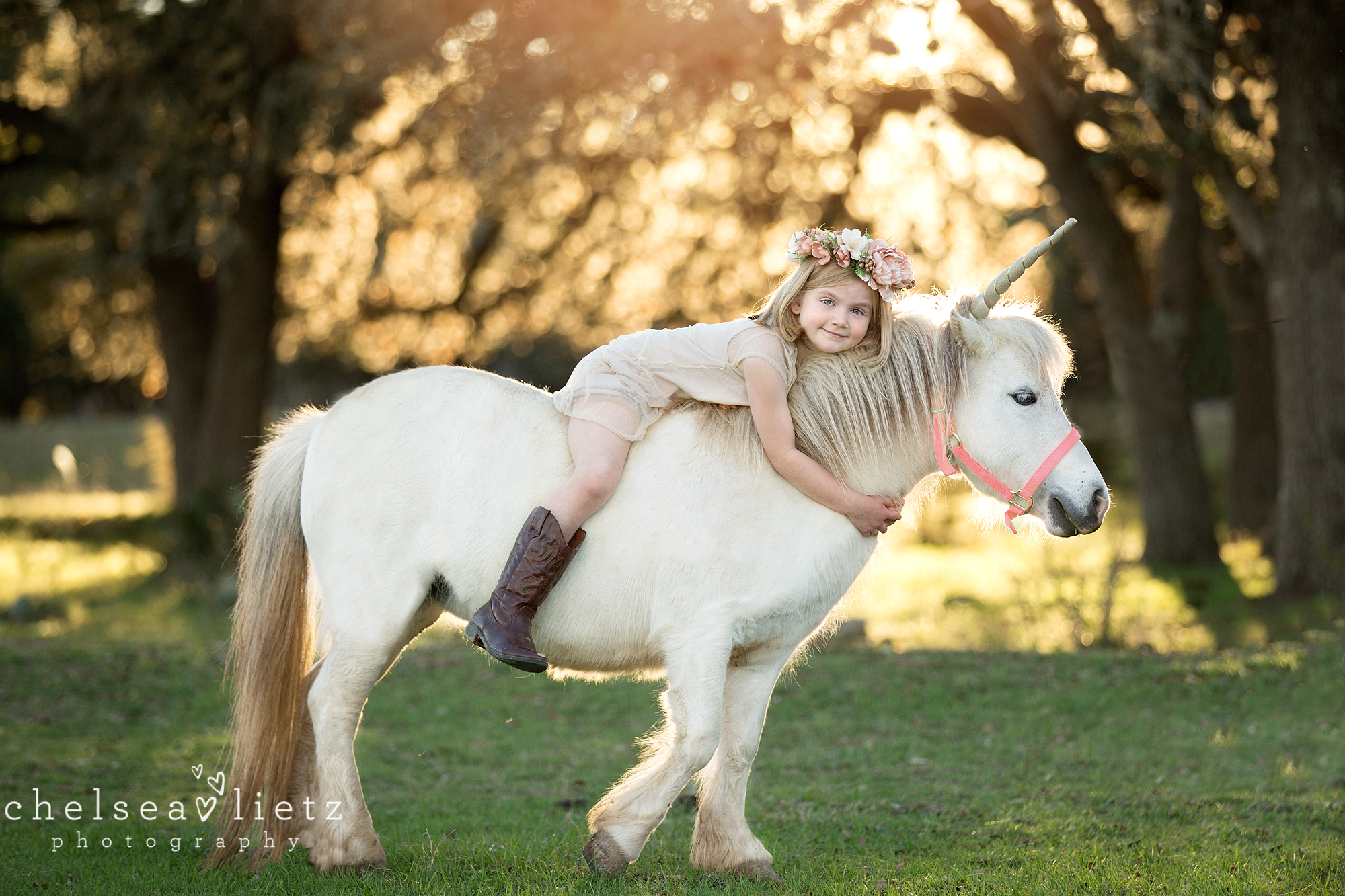 Unicorn And Pony Photos For Children Chelsea Lietz Photography San Antonio San Antonio Newborn Photographer Chelsea Lietz Photography Babies Children Maternity